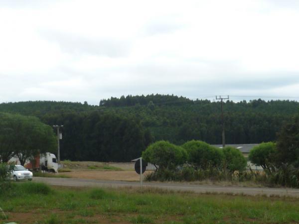 Visão da Rodovia SC 468 e área industrial